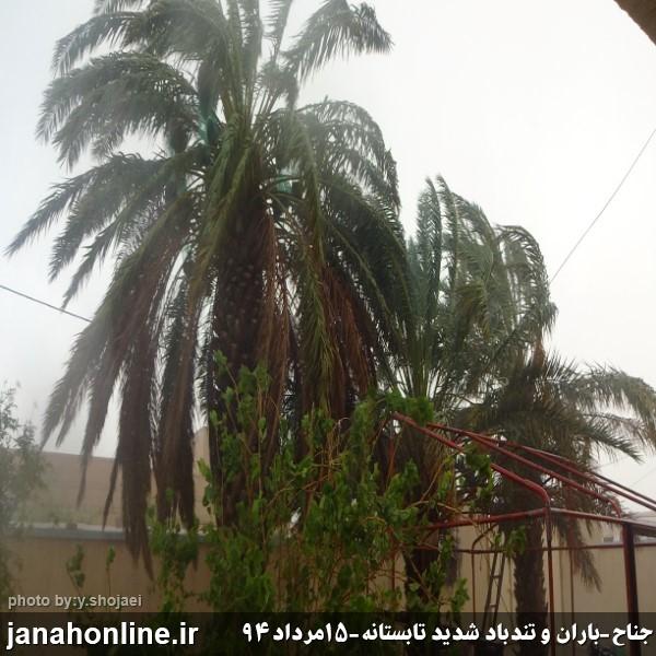 جولان چهل پسینی در جناح/بارش رحمت الهی و خوشحالی مردم+۱۰ عکس